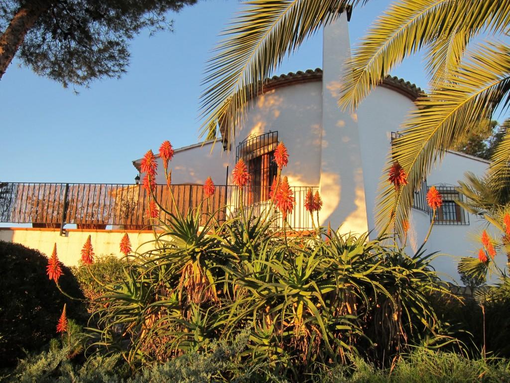 Feriehuset set fra haven